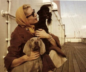 vintage, grace kelly, and dog image