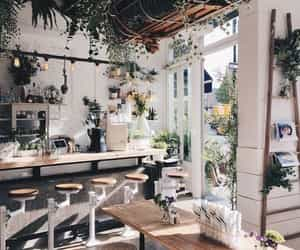 interior, plants, and cafe image