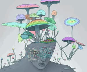 gif, drugs, and mushroom image