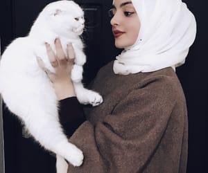 cat, hijab, and cute image