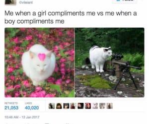 boys, girls, and meme image