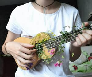flowers and ukulele image
