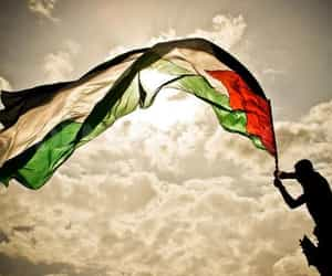 fighters, freedom, and palestine image