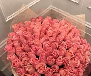 romantic, pink, and roses image
