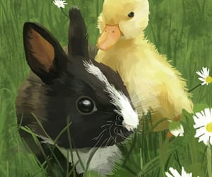 bunny, cute animals, and cute bunny image
