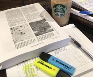 books, reading, and histology image