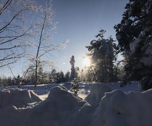 matin, morning, and neige image