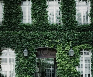 building, green, and nature image