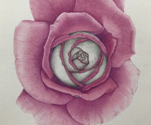 art, artwork, and coloured pencil image