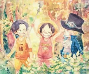 one piece, ASL, and ace image