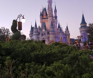 disney, love, and family image