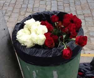roses and sad image