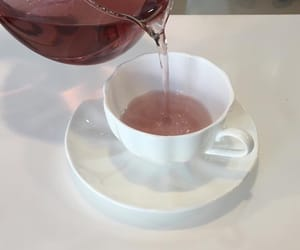 pink, tea, and aesthetic image