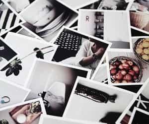 boho, polaroid, and chic image