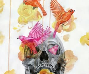 bird, skull, and flowers image