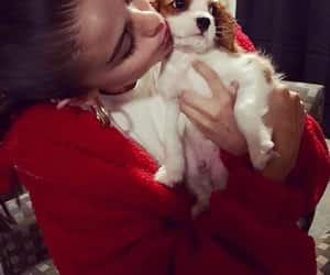 selena gomez, dog, and charlie image