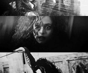 harry potter, bellatrix, and hp image