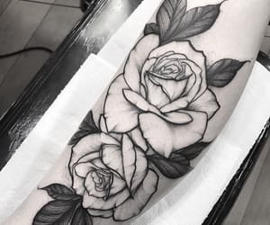 flower, rose, and ink image