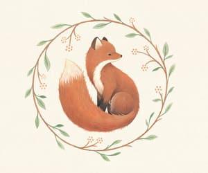 fox, adorable, and animal image