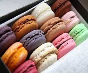 colors and french macaroons image