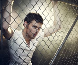 joseph morgan, klaus, and tvd image