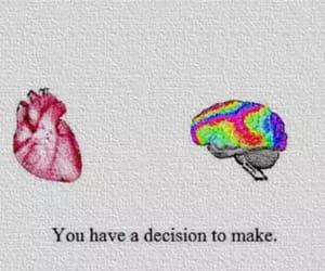 gif, heart, and brain image