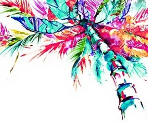colorful, paint, and tropical image