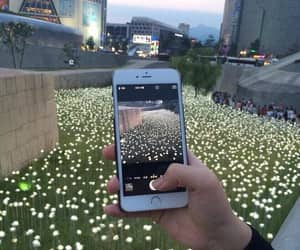 iphone, flowers, and photo image