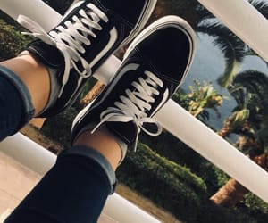 palm trees, shoes, and vans image