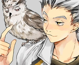 haikyuu, bokuto, and anime image