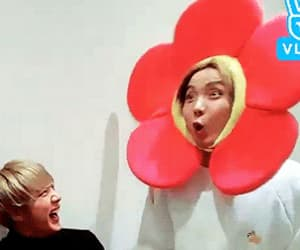 flower, gif, and k-pop image