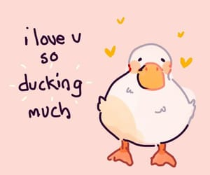 duck, cute, and love image