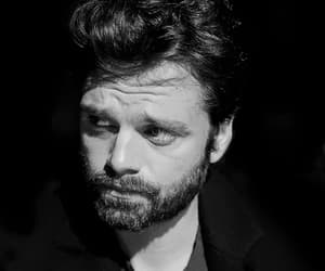 actor, handsome, and sebastian stan image