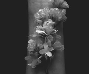 flowers, black and white, and hands image