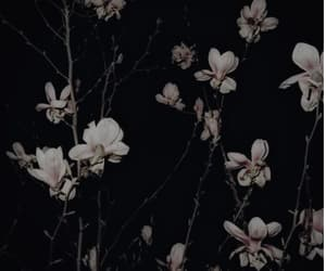 cry, dark, and flowers image