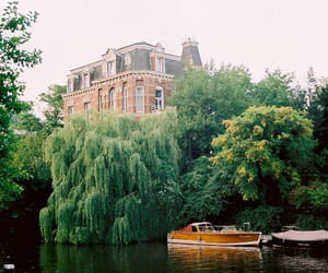 tree, boat, and house image