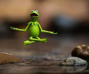 kermit, woke, and meditation image