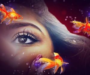 edit, eye, and koi fish image