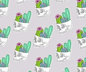 cactus, wallpapers, and tumblr image