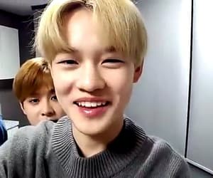 lq, nct, and chenle image