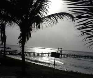 blanco y negro, playa, and relax image