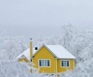cold, white, and yellow image