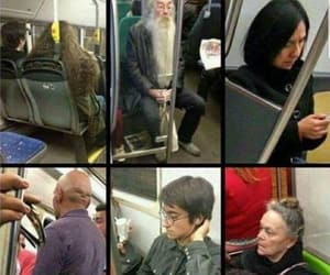 harry potter, funny, and train image