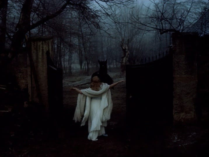 antique, fog, and dark image