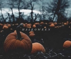 forest, pumpkins, and helloween image