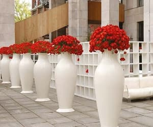flower power and modern home accessories image