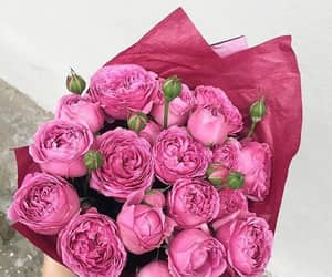 pink, bouquet, and flowers image