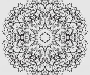 art, coloring, and flower image