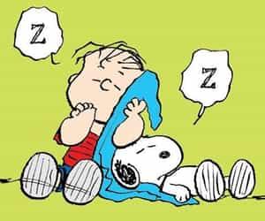 blanket, dog, and cartoon image