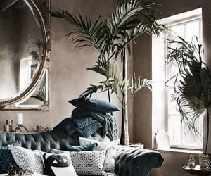 interior, design, and plants image